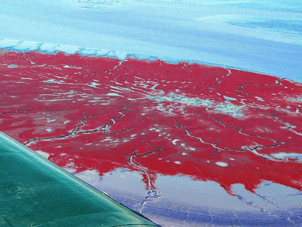 redbeach